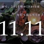 11月11日のアイハーブセール 2019年