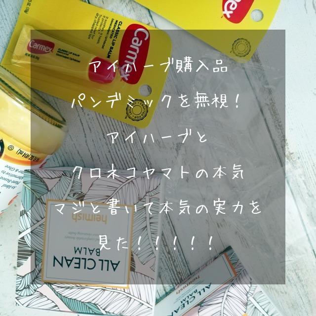 アイハーブ購入品 クロネコヤマトと iHerb 韓国倉庫の本気を見た!