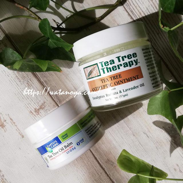 Tea Tree Therapy, ティーツリー アンティセプティックオイントメント(消毒軟膏)、2 oz (57 g)